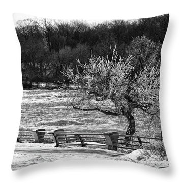 Throw Pillow featuring the photograph Niagara Falls Ice 4514 by Guy Whiteley