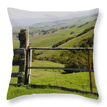 Nicasio Overlook Throw Pillow