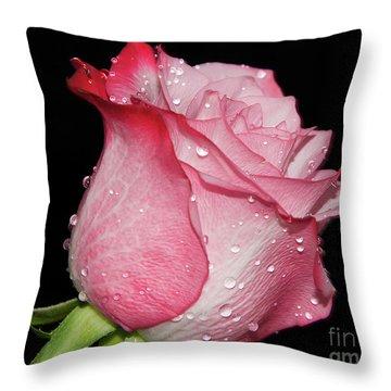Throw Pillow featuring the photograph Nice Rose by Elvira Ladocki