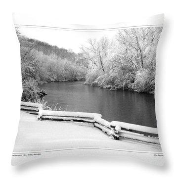 Nichols Arboretum #5 Throw Pillow