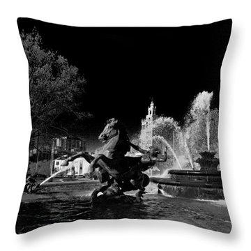 Nichols Fountain Throw Pillow