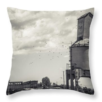 Nickel Plate Road  Throw Pillow by Off The Beaten Path Photography - Andrew Alexander