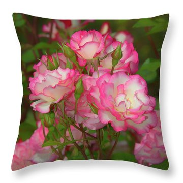 Nicole Rose Lighter Throw Pillow
