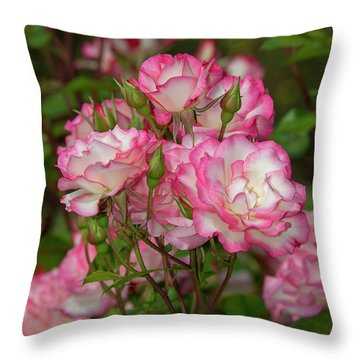 Nicole Roses 1 Throw Pillow