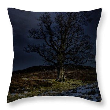 Nidderdale Tree Throw Pillow