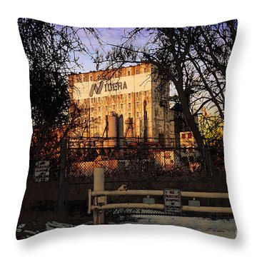 Throw Pillow featuring the digital art Nidera by David Blank