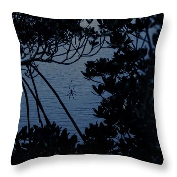 Throw Pillow featuring the photograph Night Banana Spider by Megan Dirsa-DuBois
