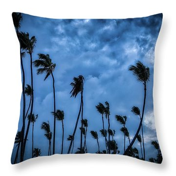 Night Beach Throw Pillow