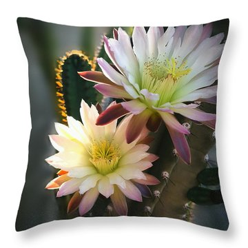 Throw Pillow featuring the photograph Night-blooming Cereus 3 by Marilyn Smith