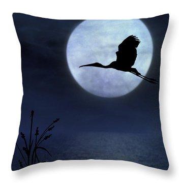 Throw Pillow featuring the photograph Night Flight by Christina Lihani
