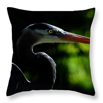 Throw Pillow featuring the photograph Night Hunter by Howard Bagley