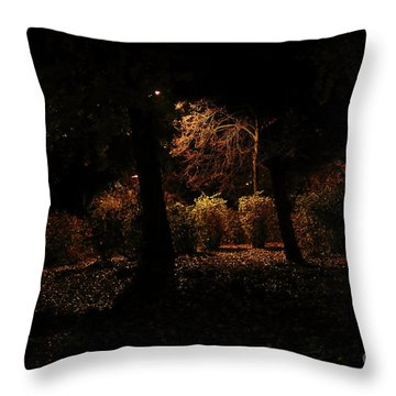 Night In The Park  Throw Pillow by Ana Mireles