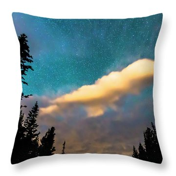 Throw Pillow featuring the photograph Night Moves by James BO Insogna