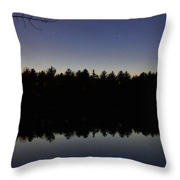Night Reflects On The Pond Throw Pillow