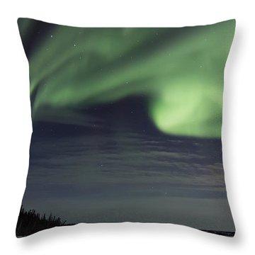 Night Skies Throw Pillow