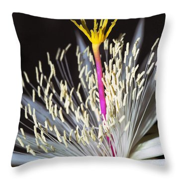 Night Time Celebration Throw Pillow by Kelley King