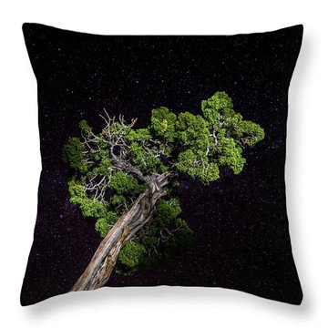 Throw Pillow featuring the photograph Night Tree by T Brian Jones