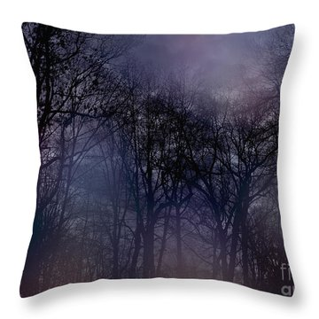 Nightfall In The Woods Throw Pillow by Sandy Moulder