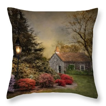 Nightfall Throw Pillow by Robin-Lee Vieira