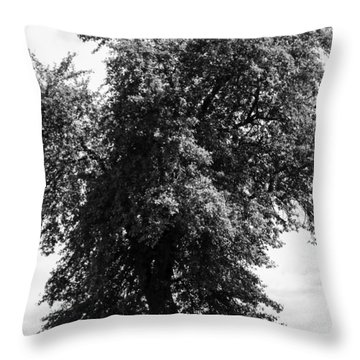 Nina Tree Dressed Out Bw Throw Pillow