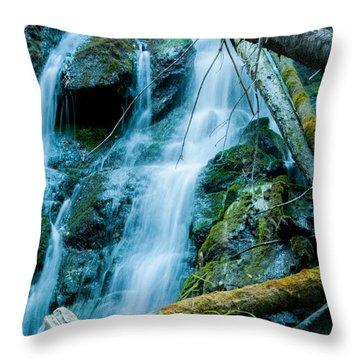 Nine Mile Falls Throw Pillow