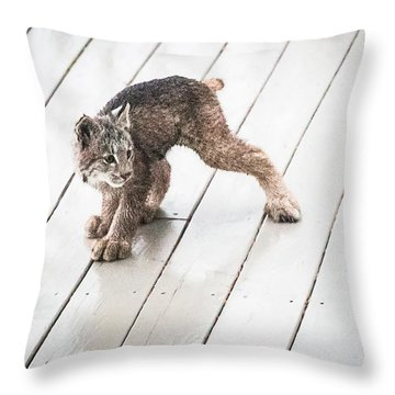 Ninja Lynx Kitty Throw Pillow