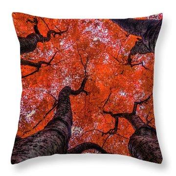 Nishinomiya Japanese Garden - Autumn Trees Throw Pillow