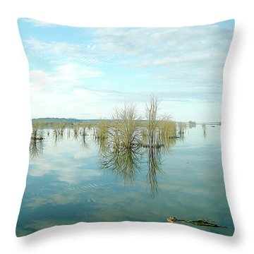 Nisqually High Tide Throw Pillow