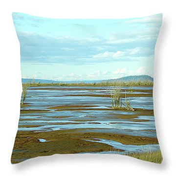 Nisqually Looking North Throw Pillow