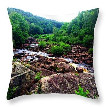 Nissan River Rapids Throw Pillow