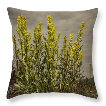 Nizina River Goldenrod Throw Pillow