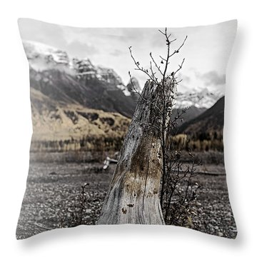 Nizina River Tree Stump Throw Pillow