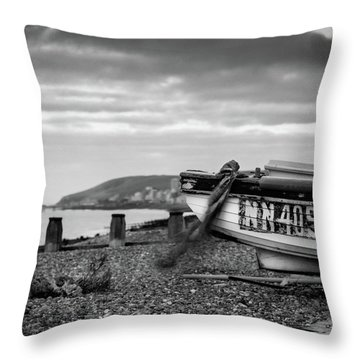 Throw Pillow featuring the photograph Nn405 by Will Gudgeon