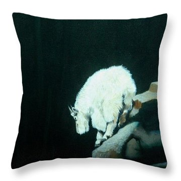 No Fear Throw Pillow by Jean Yves Crispo