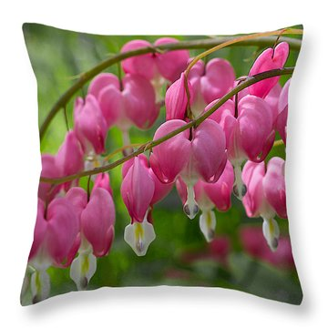 Throw Pillow featuring the photograph Bleeding Heart by Patti Deters
