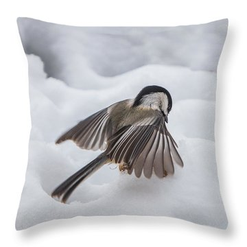 Throw Pillow featuring the photograph Chickadee - Wings At Work by Patti Deters