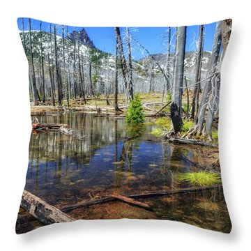 Throw Pillow featuring the photograph No Name Pond by Cat Connor
