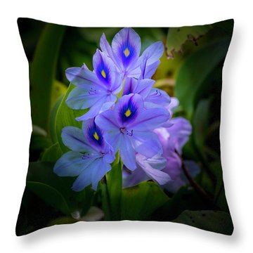 No Water Needed Throw Pillow