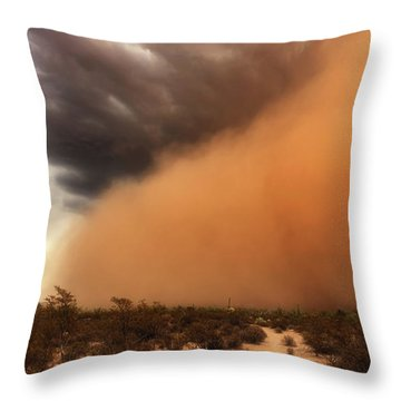 Nowhere To Hide Throw Pillow by Rick Furmanek