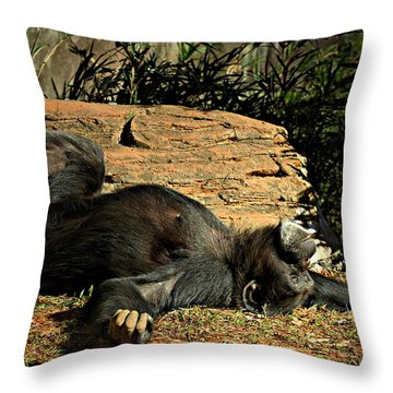 Throw Pillow featuring the photograph No Worries by Jessica Brawley