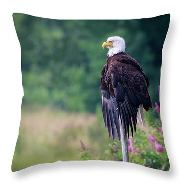 No Worries Throw Pillow