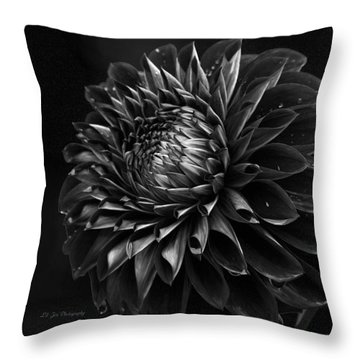 Noir Beauty Throw Pillow