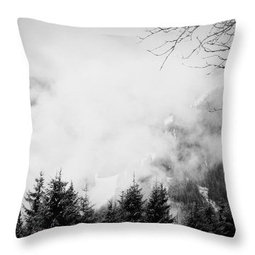 Noiseless I Throw Pillow