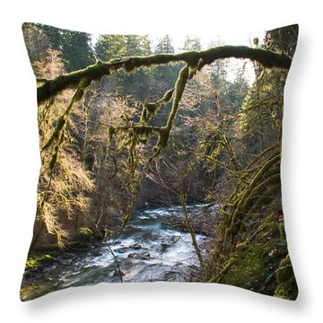 Throw Pillow featuring the photograph Nooksack River by Yulia Kazansky
