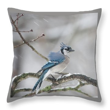 Nor' Easter Blue Jay Throw Pillow