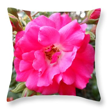 Nora's Knockout Roses Throw Pillow