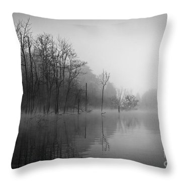 Norris Lake April 2015 3 Throw Pillow