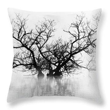 Norris Lake April 2015 5 Throw Pillow