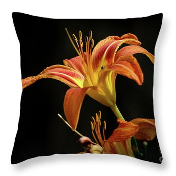 Throw Pillow featuring the photograph Norris Lake Daylily by Douglas Stucky