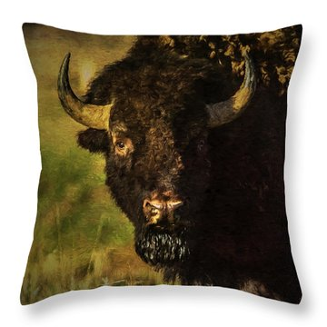 North American Buffalo Throw Pillow